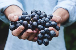 Nutrition-in-recovery-grapes
